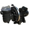 Sta Rite 0.75 HP Single Phase Pump