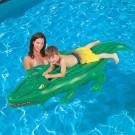 Ride On Crocodile